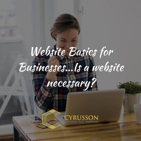 Website Basics For Businesses...Is a Website Necessary?
