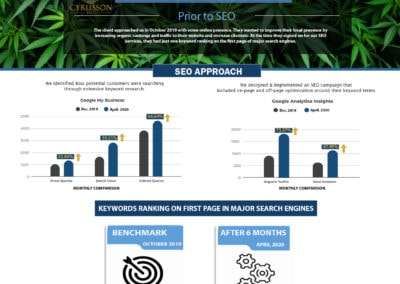 SEO Case Study - Cannabis Company