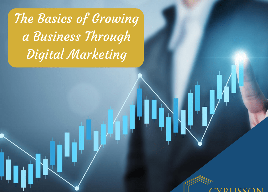 The Basics of Growing a Business Through Digital Marketing
